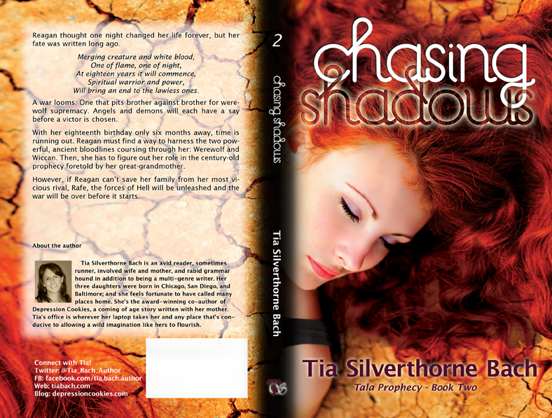 BookCover_Chasing_Shadows_Tia_Bach_SFW_RevealFile