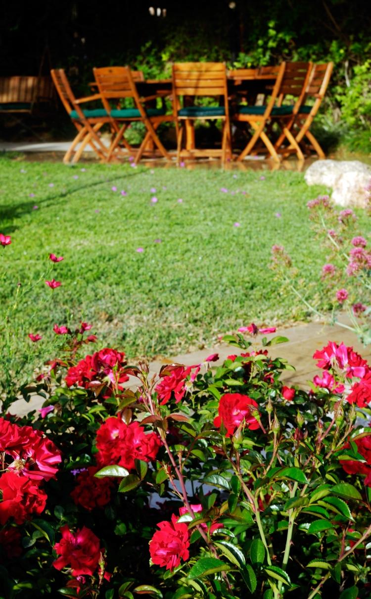 dreamstimefree_5081971 Orientaly Dreamstime Stock Photos